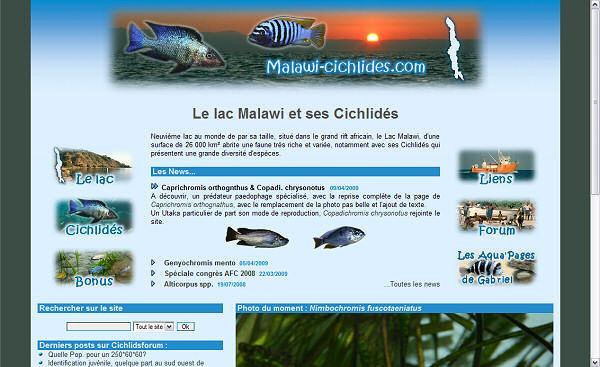Malawi-cichlides.com