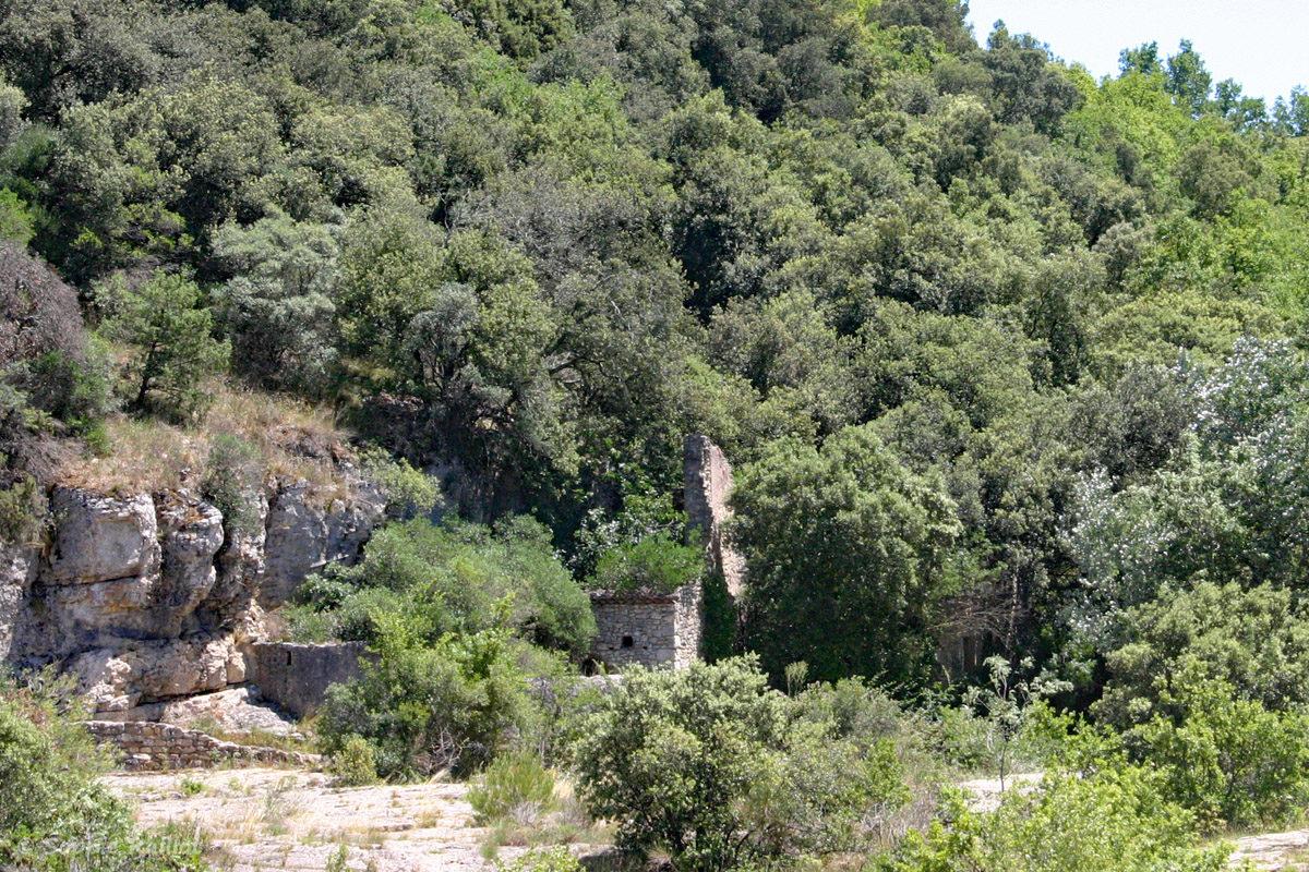 Restes d'un Foulon à foulon, situés sur la rive gauche de la Cèze, au niveau des cascades du Sautadet, à la roque-Sur-Cèze. Le moulin a été en partie emporté lors de la crue de 2002.