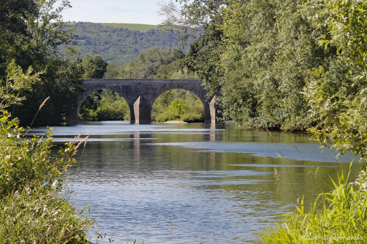 Le pont Charles Martel assure le passage de la route reliant Uzès à Pont-Saint-Esprit, principal débouché de l'ancien évêché sur la vallée du Rhône. La construction du pont remonterai au XIII ème siècle. Cet ouvrage présente une longueur exceptionnelle de 155 m et compte 12 arches en plein cintre.
