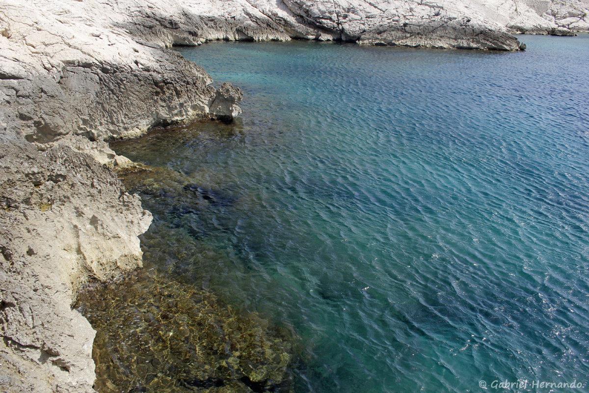 Calanque située entre la calanque Cap Frioul et la calanque Pousterlo,
