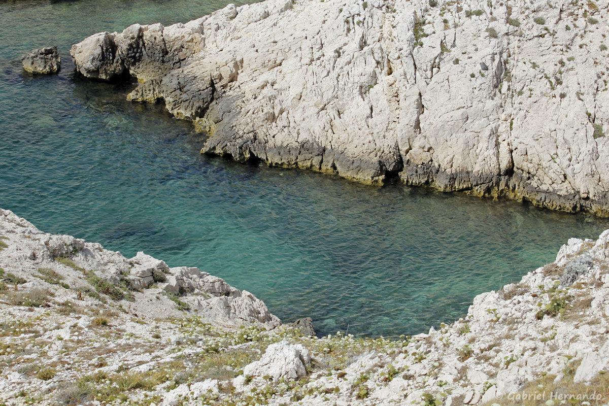 Calanque Cap Frioul à l'Ouest de l'île de Pomégues, dans l'archipel du Frioul, photographiées en juin 2019