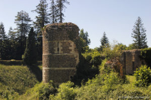 Ruines de l'enceinte protégeant la basse court