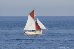 Petit voilier en mer (Fécamp, septembre 2020)