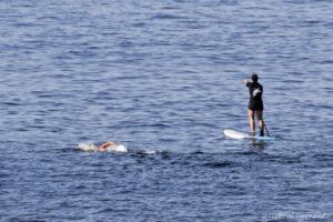 Nageur et paddle en mer (Fécamp, septembre 2020)