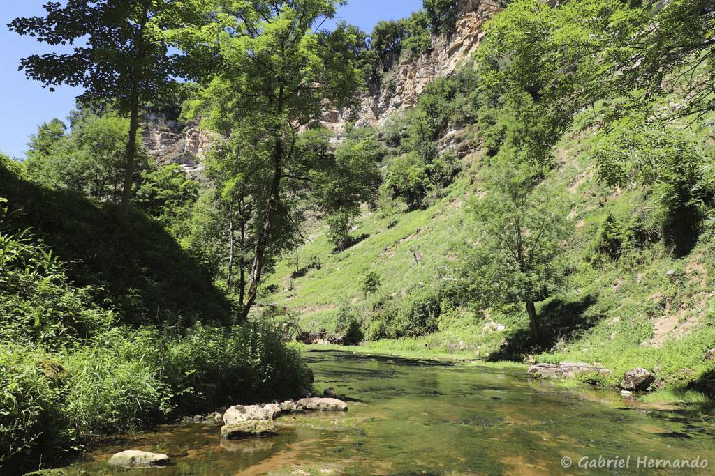 Le Dourdou, dans son canyon (Trou de Bozouls, Aveyron, juillet 2021)