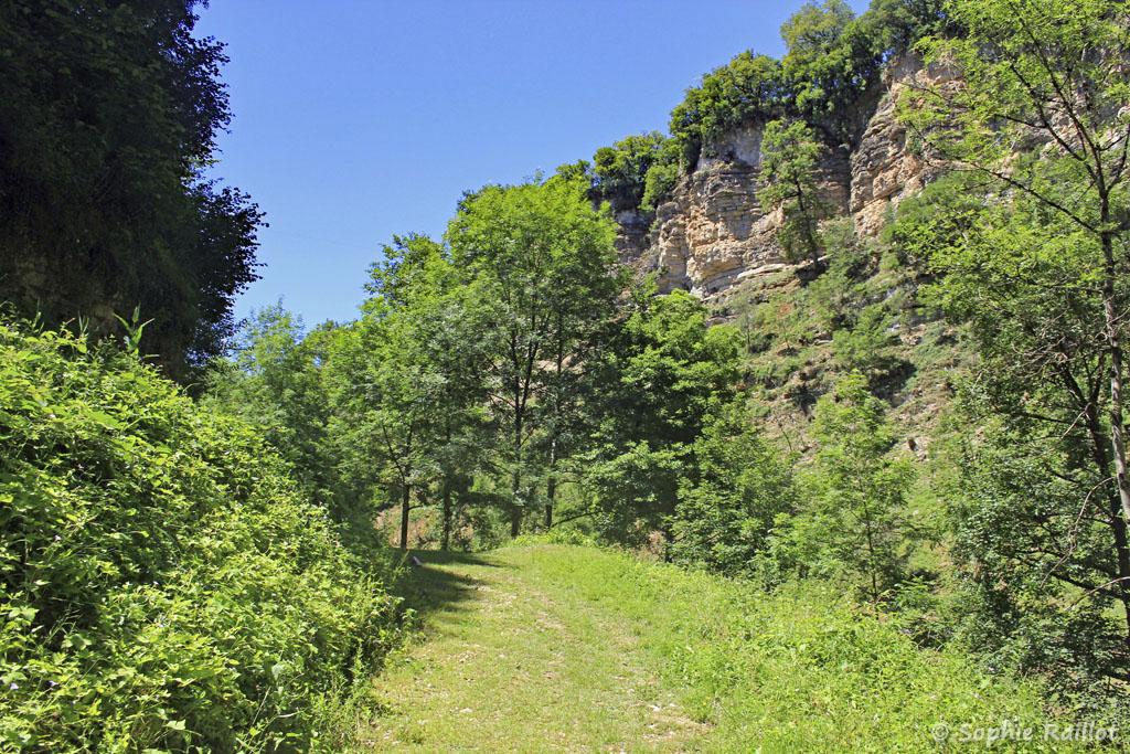 Le sentier, dans le canyon (Trou de Bozouls, Aveyron, juillet 2021)