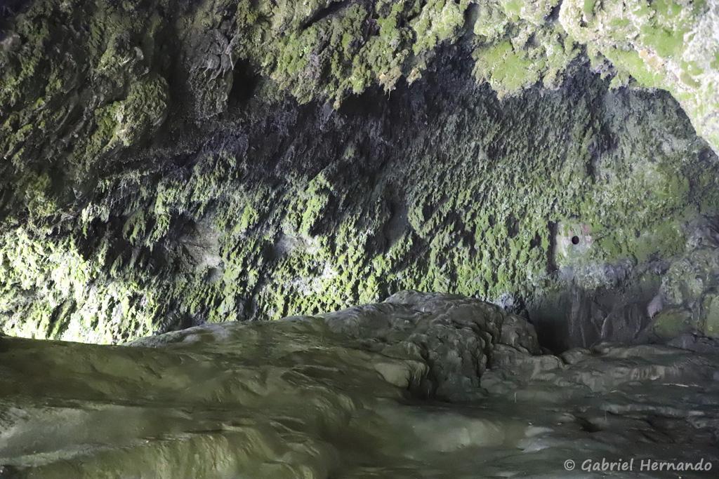 Cavité, située au pied de la cascade (Salles-La Source, juillet 2021)