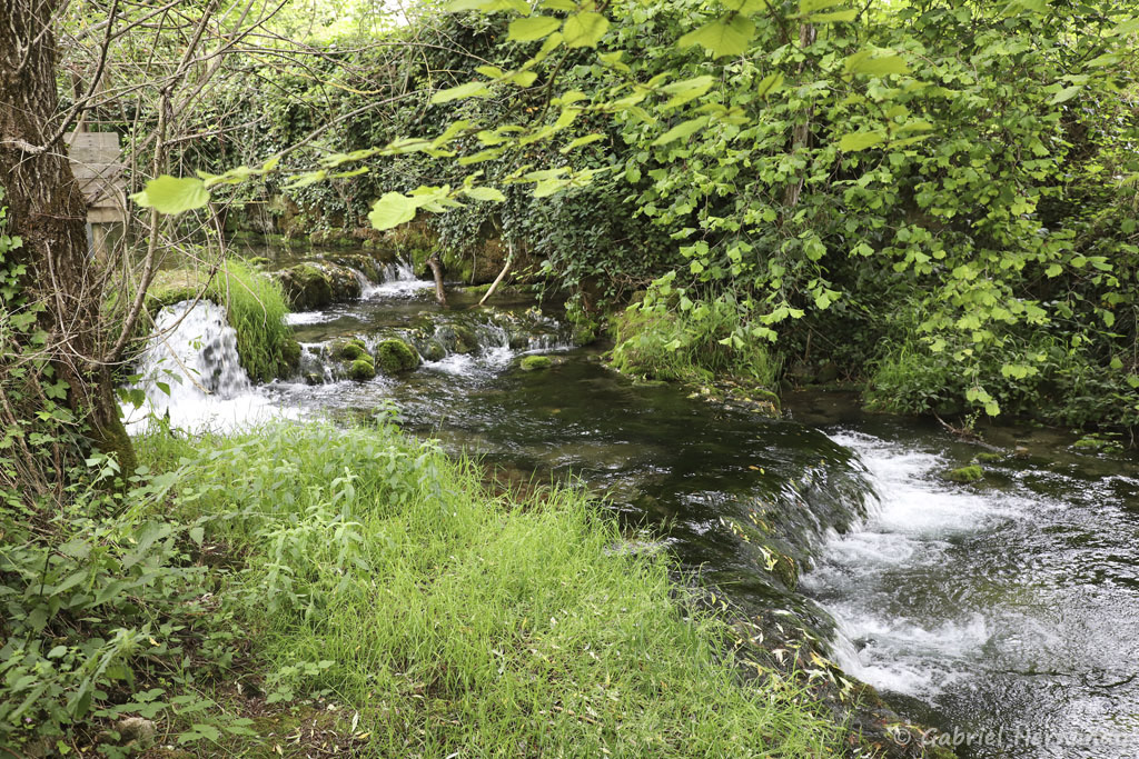 Dans le haut du village, Le Créneau, sécoulant du plateau vers la cascade (Salles-La Source, juillet 2021)